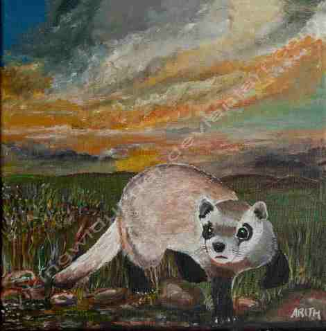 Wild Ferret - Acrylic on Canvas 30x30 By: Arith Härger