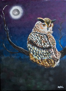 Ugla Skyrta - Owl Coat